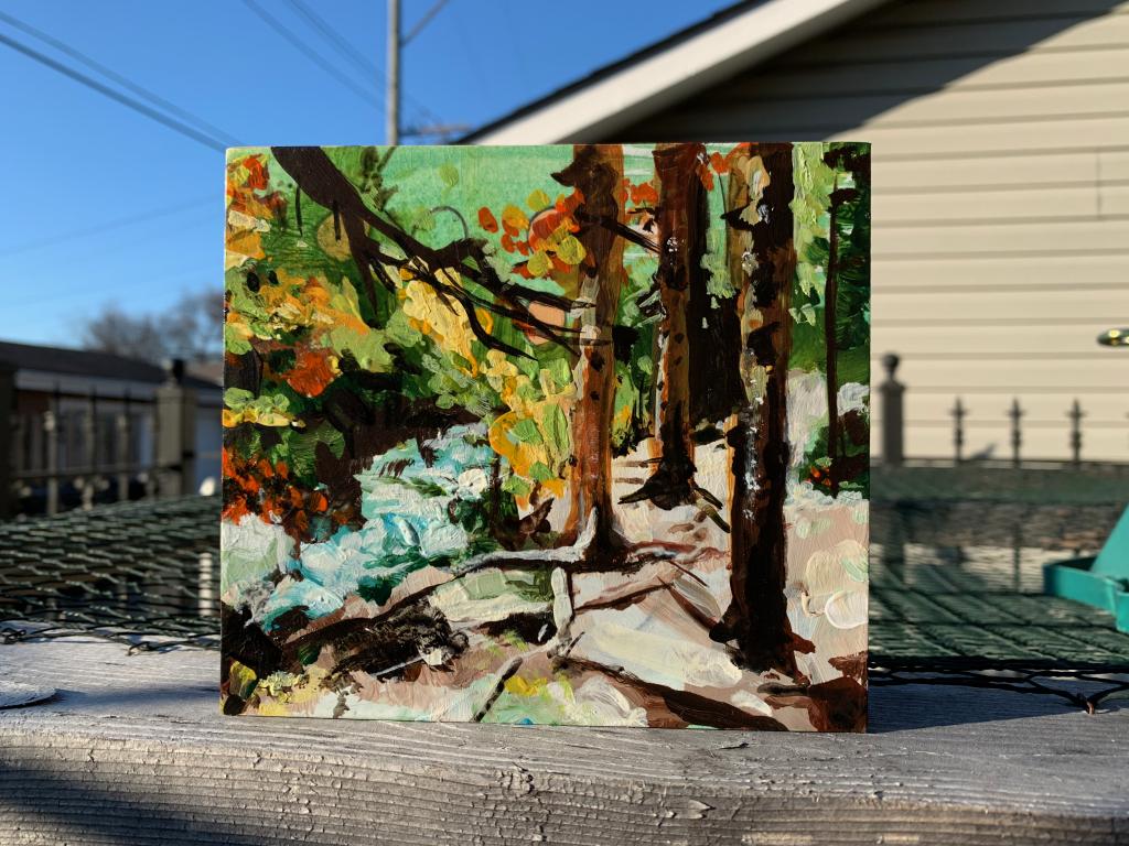 Painting: Wild Basin, near Copeland Falls